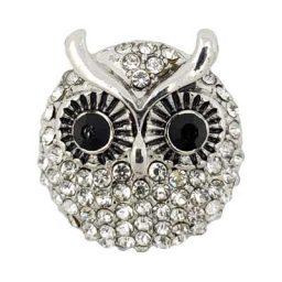 Crystallized Owl Treasure Snap