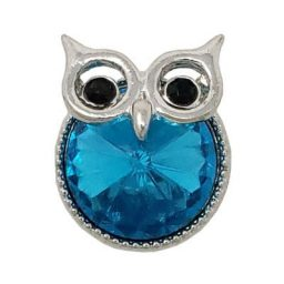 Turquoise Crystal Owl Treasure Snap