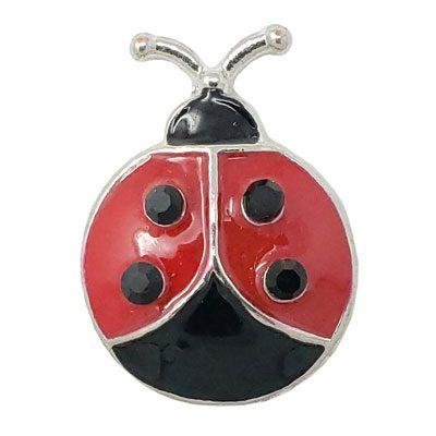 Ladybug Treasure Snap