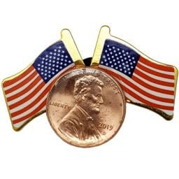 Patriotic Lapel Pin